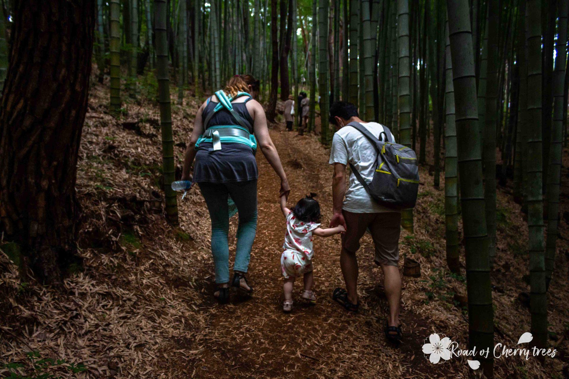 Photo de famille prise lors d'une ballade dans la forêt de bambous d'Ahopsan à Busan en Corée du Sud